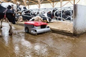 Reinigungsroboter Agrarmesse